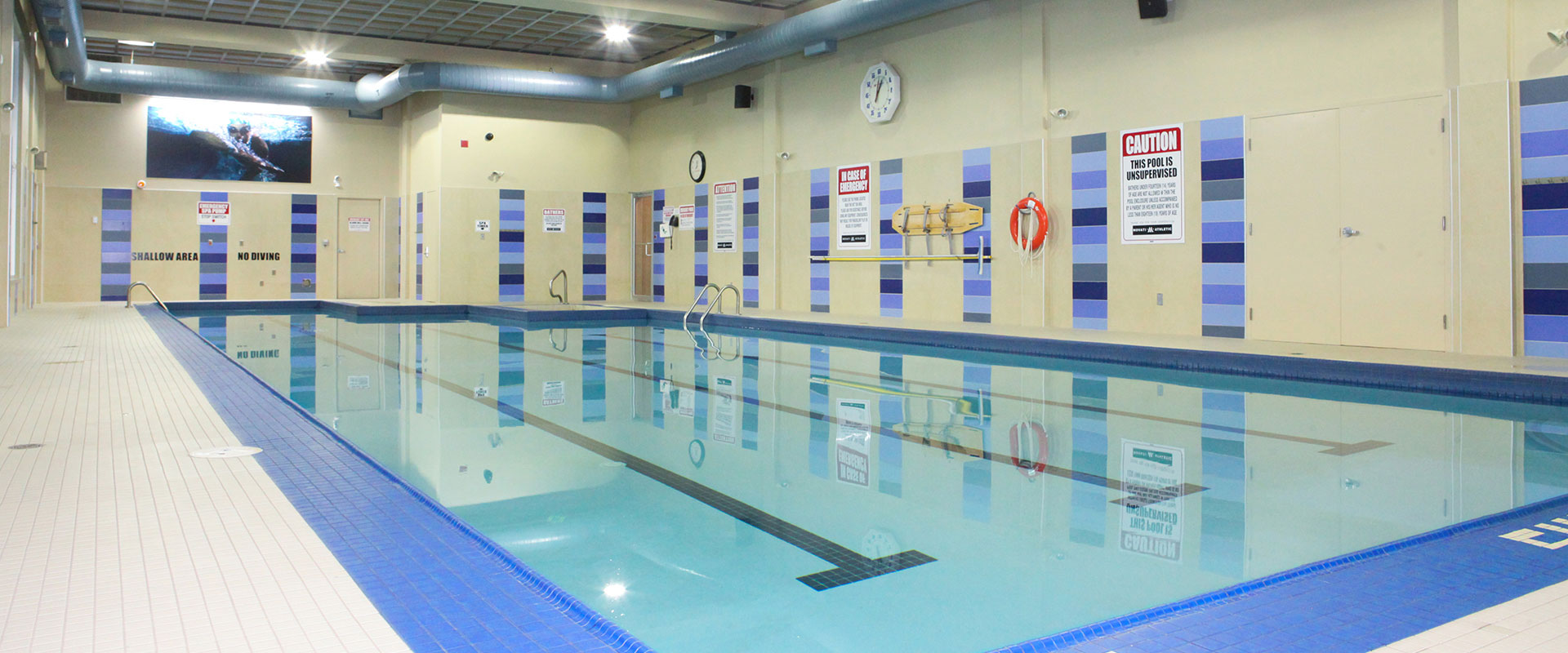 Movati Athletic Guelph - Sanity Pool